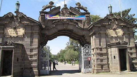 The biggest campus of Addis Ababa University is located at the area of the former king's palace of Haile Selassie. This picture shows the main entrance with two lions of Judah, the heraldic animal of Addis Ababa, sitting enthroned.